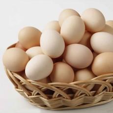 土鸡蛋 福安土鸡蛋