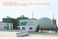 3000立方沼气发酵罐 1000立方双膜气柜