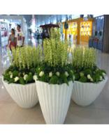玻璃钢花盆-A15